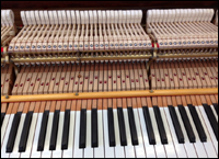 Steinway 1917 grand piano action